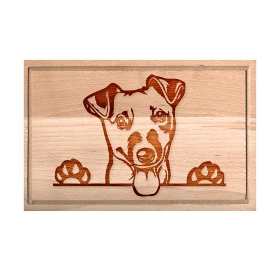 Jack Russell terrier - kicsi