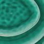 Kép 7/7 - DE LA ROYA tányér 28,7x24cm sötét zöld